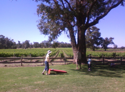Peel Estate Winery picnic